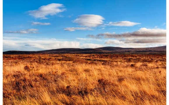 Art print of Culloden Moor