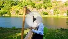 Cant Help Falling in Love - Harp Solo - Wedding Songs for
