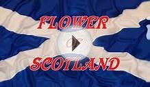 Music ~Flower of Scotland ~Lone Piper~ Bagpipes.